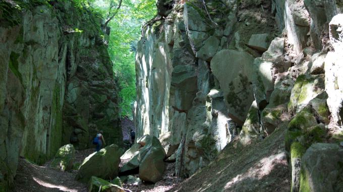 Location Suche für den Siegfried.
