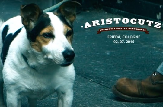 Aristocutz im Frieda 2